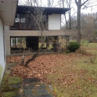 Rear yard of residence with fallen leaves on the ground